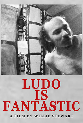 Ludo Mich - Ludo is Fantastic DVD 28745