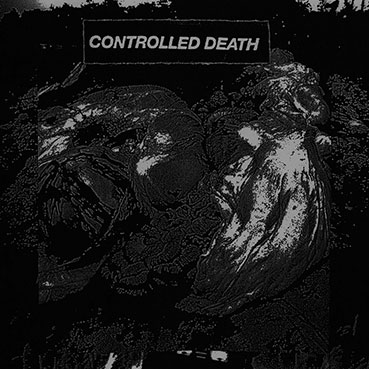 "Controlled Death - Beautiful Decomposition 7"" 28675"
